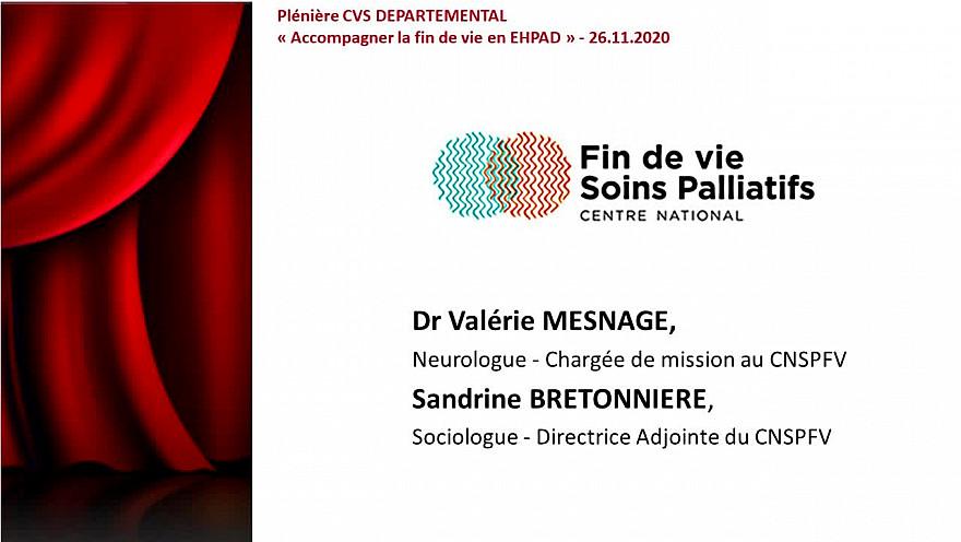 PLENIERE CVS DEPARTEMENTAL 2020 - SEQUENCE 3 -Centre National Soins Palliatifs et Fin de Vie (CNSPFV)